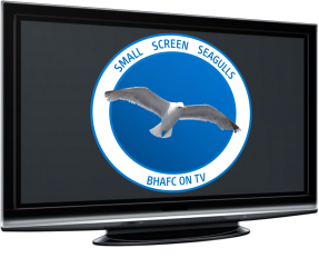 Small Screen Seagulls Logo