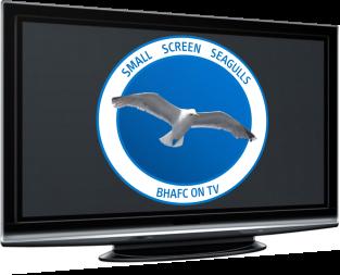 Small Screen Seagulls Logo